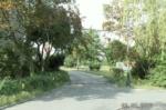 Zdjęcie 10