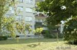 Zdjęcie 24